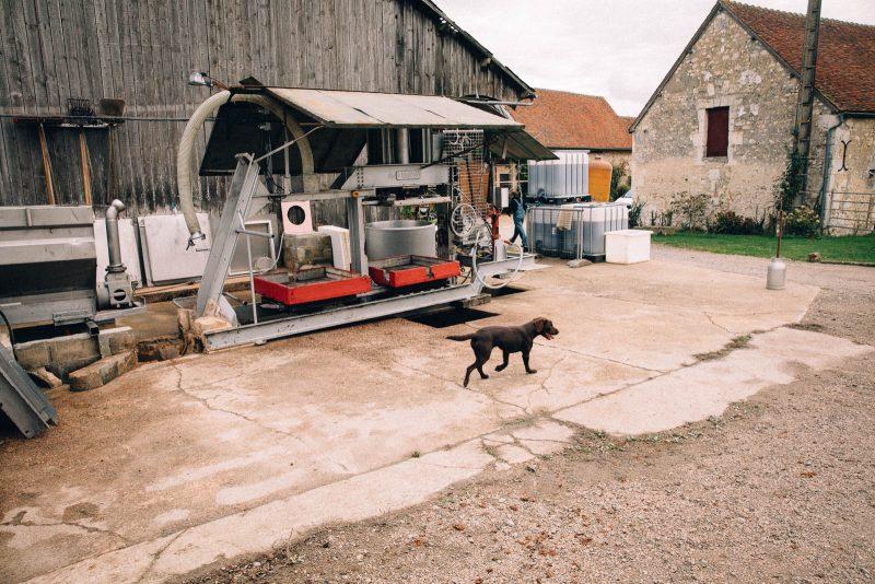 bienvu upcycling zero dechet food bieres jus eaudevie couinecochon leperche hugo martin photographie francois rouzioux 18